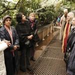Tea Party at Kew Gardens 10