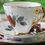 Tea Party @ Kew Gardens with Al Hasaniya 29