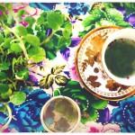 Eco Tea Party 07