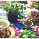 Eco Tea Party 10